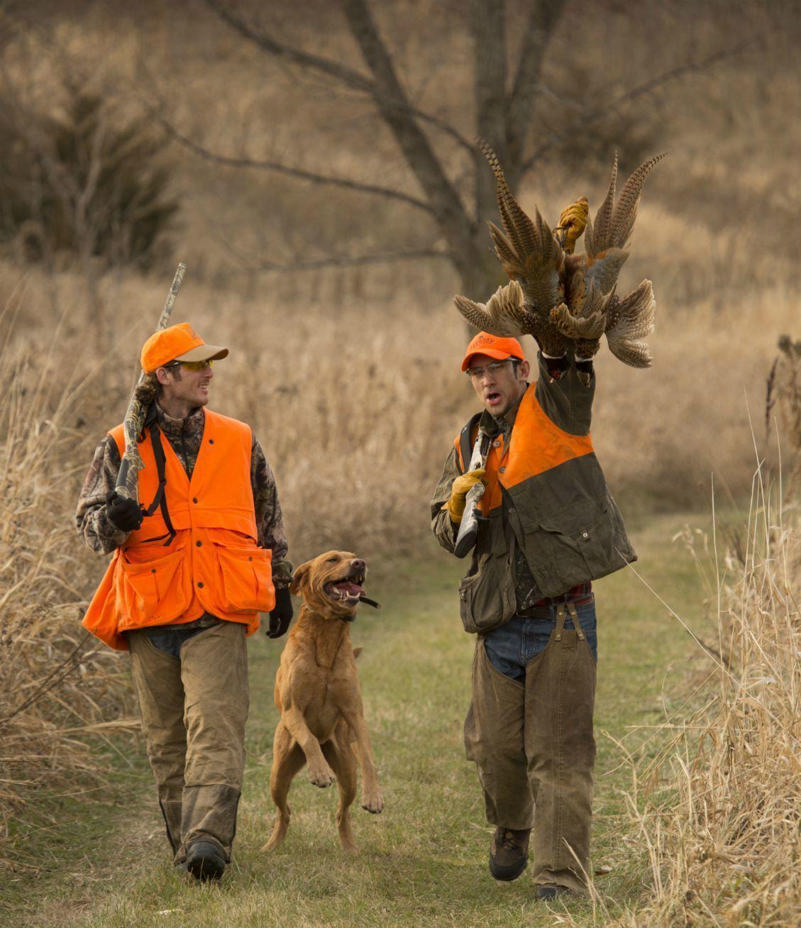 Outfitting Upland Bird Hunters